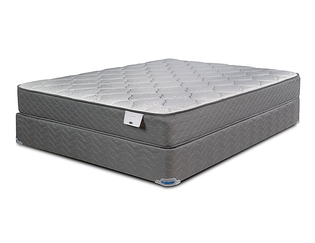 Chelsey Plush Mattress